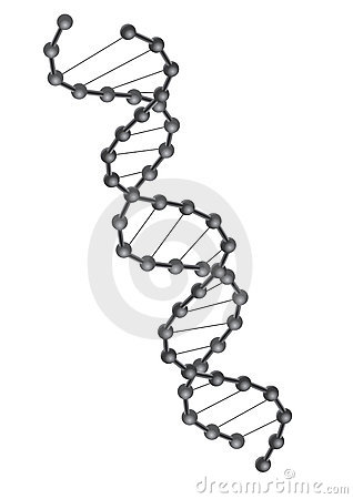 De vector van DNA