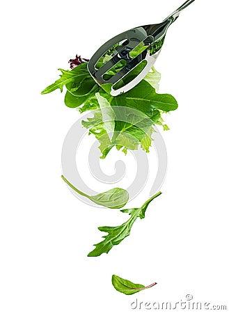 De verse saladebladeren vallen neer
