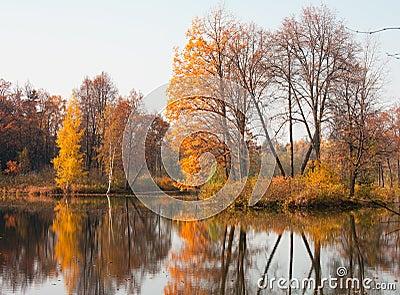 De vijver van de herfst