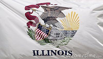 De Vlag van de Staat van Illinois