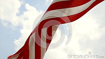 De vlag de Verenigde Staten van Amerika van de V.S. stock video