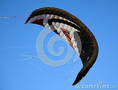 De vliegers van de folie