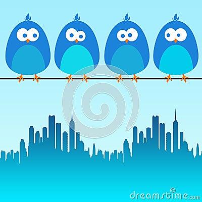 De vogels van de stad