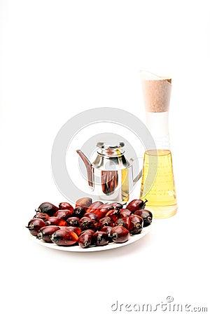 De vruchten en de olie van de palmolie