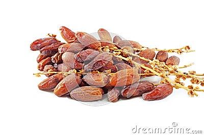 De vruchten van de datum
