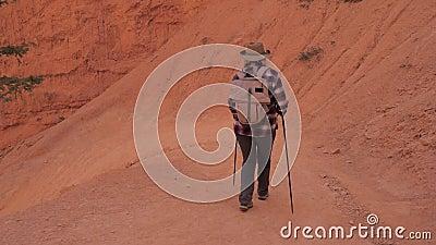 De wandelaarvrouw daalt op Serpentine Footpath Near The Rock-Muur van Bryce Canyon stock videobeelden