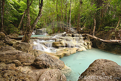 De Watervallen van de wildernis