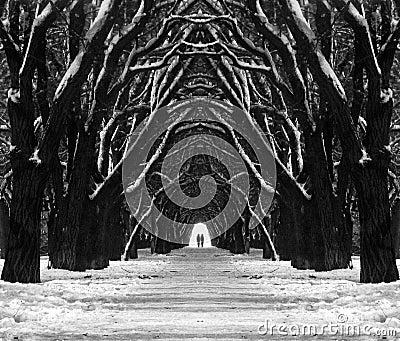 De weg van de mysticus