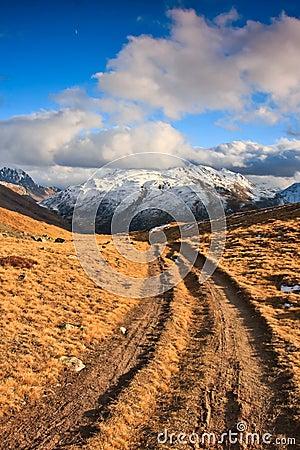 De weg van de wandeling