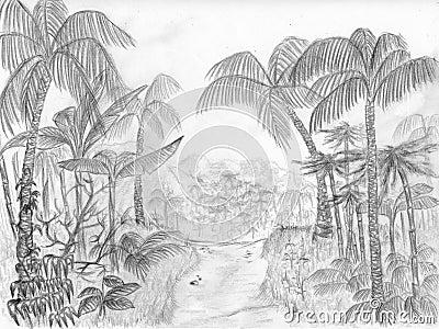 De weg van de wildernis