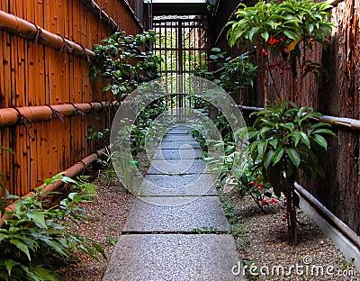 De weg van Gion