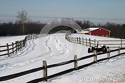 De winter op het Landbouwbedrijf