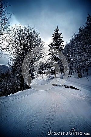 De winterweg