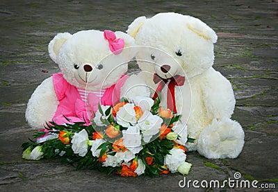 Pari witte teddybeer