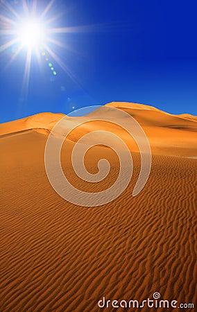 De woestijn van Namib