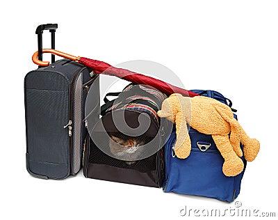 De zakken van de reis en huisdierencarrier