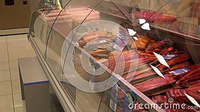 De zalm van Chinook van de heilbot sockeye zalm en veel andere vissen in de rode winkelvensters en de planken van centrale markt stock footage