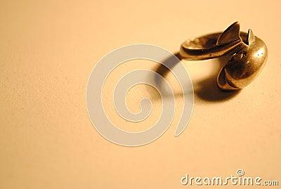De zilveren ring van de dolfijn