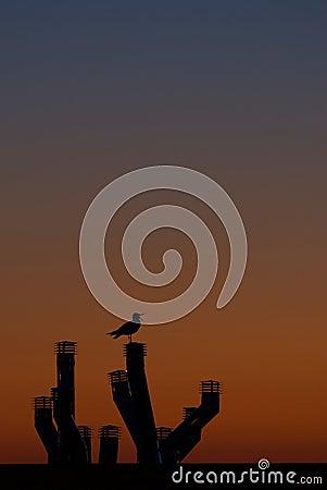 De zonsondergang van de stad