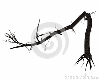 Dead broken tree trunk - 3D render Stock Photo