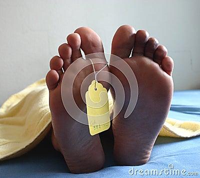 Free Dead Feet Stock Photo - 597400