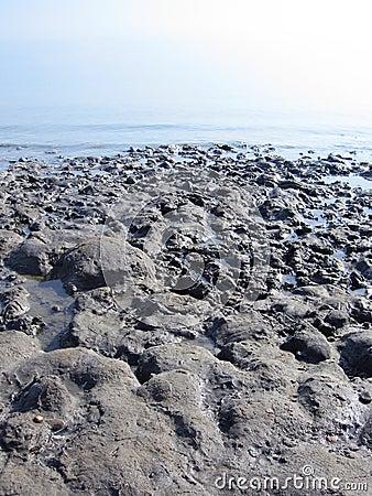Free Dead Sea Royalty Free Stock Photo - 17592055
