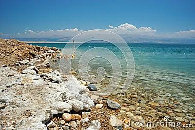 Dead Sea coast - famous salt sea, Israel