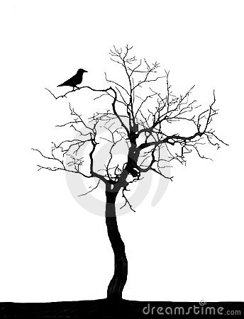 Dead Tree Royalty Free Stock Images - Image: 5246279