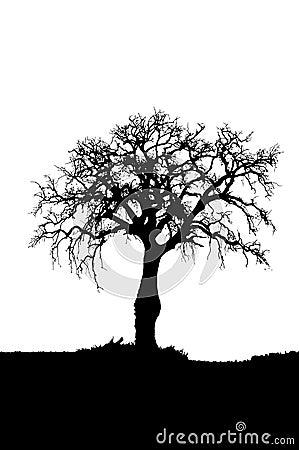 pine tree silhouette clip art. Dead+tree+silhouette+clip+