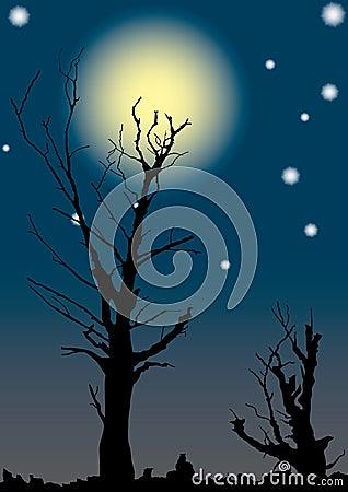 Dead trees on full moon.