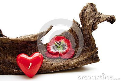 Dear symbol with tree root
