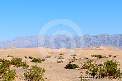 Death Valley Desert 2