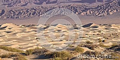 Death valley mesquite sand dunes