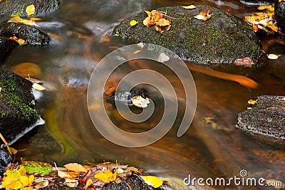 Deatil of stream flow