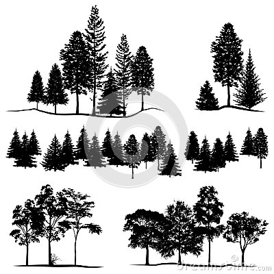 Deatiled forest tree sihouette, Vector illustration Vector Illustration