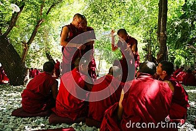 Debating monks Editorial Stock Image