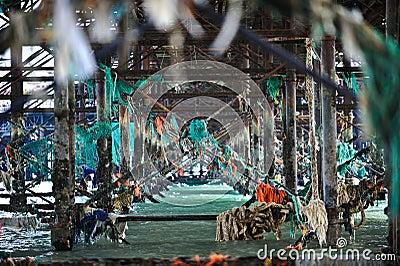 Debris from ocean under pier