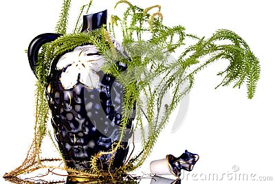 Decanter with lycopodium
