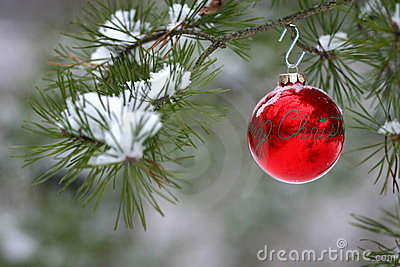 Decoración roja de la Navidad en árbol de pino nevado al aire libre
