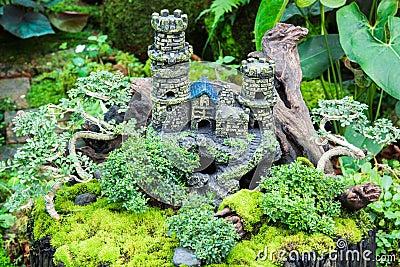 Decorate in garden