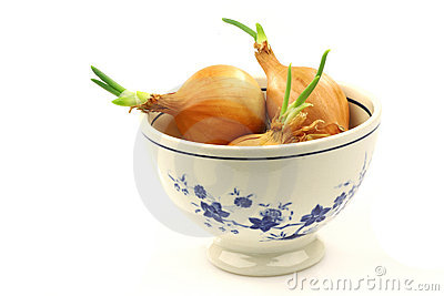Decorated bowl with spring onions
