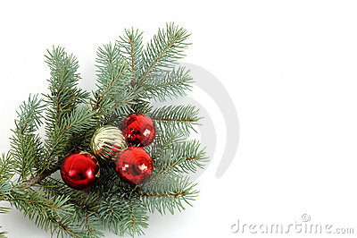 Decorated Christmas Bough #2