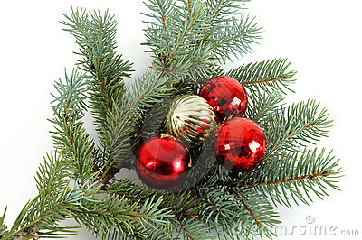 Decorated Christmas Bough #3