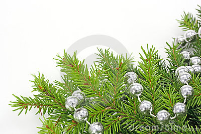 Decorated christmas tree bough
