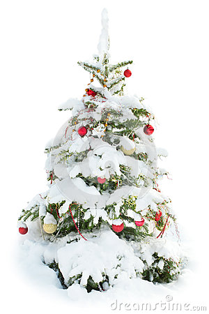 Decorated Christmas tree under snow isolated
