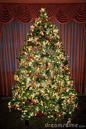 Decorated - lighted Christmas Tree