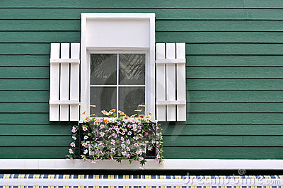 Decorated window of green architecture