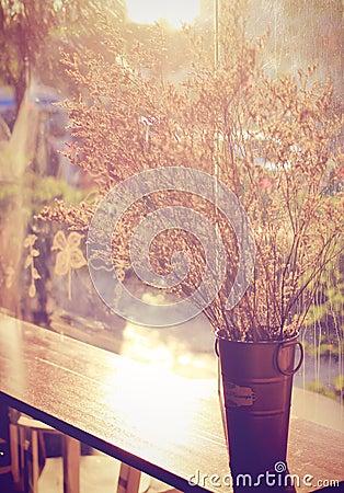 Decoratie droge bloemen met retro filter stock foto 39 s afbeelding 36716213 - Decoratie geel ...