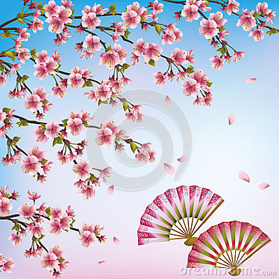 Decorative background with sakura - japanese cherr