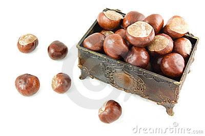 Decorative chest with chestnuts